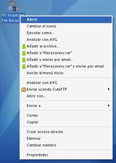 Icono de PC Inspector File Recovery